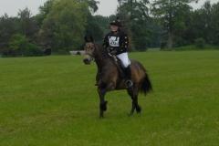 Cheshire Hunt North ODE