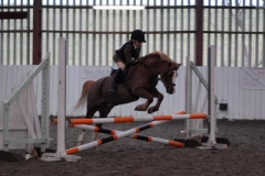 Aber Conwy Winter league Show Jumping