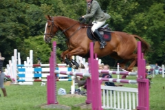 Champs 2013 - Open Show Jumping