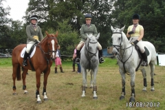 Champs Show Jumping