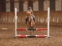 Flint and Denbigh Fun Show Jumping Competition ... 16th March 2013