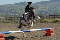 Flint and Denbigh Show Jumping - Ystrad