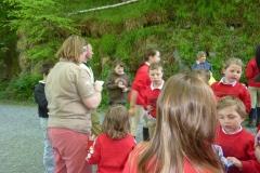 Gwydir Forest Ride Sunday 1st May 2011