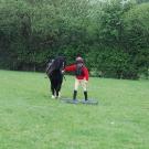handy-pony