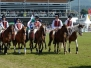 Mounted Games at The Royal Welsh