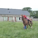 training-P1120685