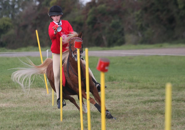 Suzi goes to Ireland with the Welsh Mounted Games Team