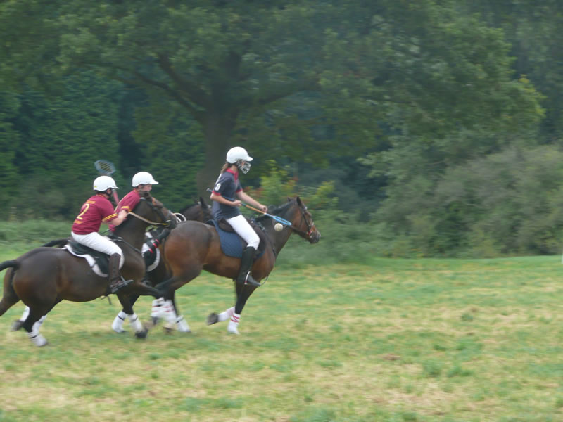 Polocrosse … why not get involved ???