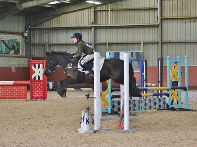 Flint and Denbigh WL Dressage and WL Show Jumping