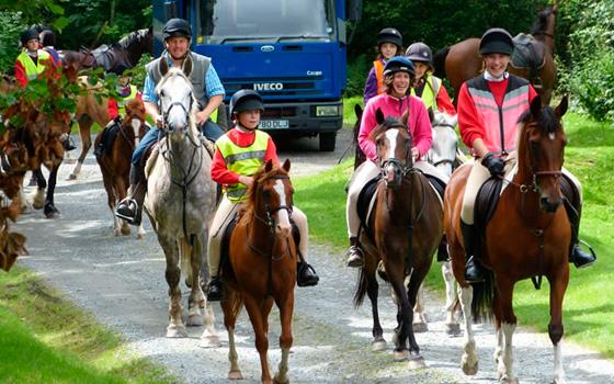 Llyn Elsi Forest Ride
