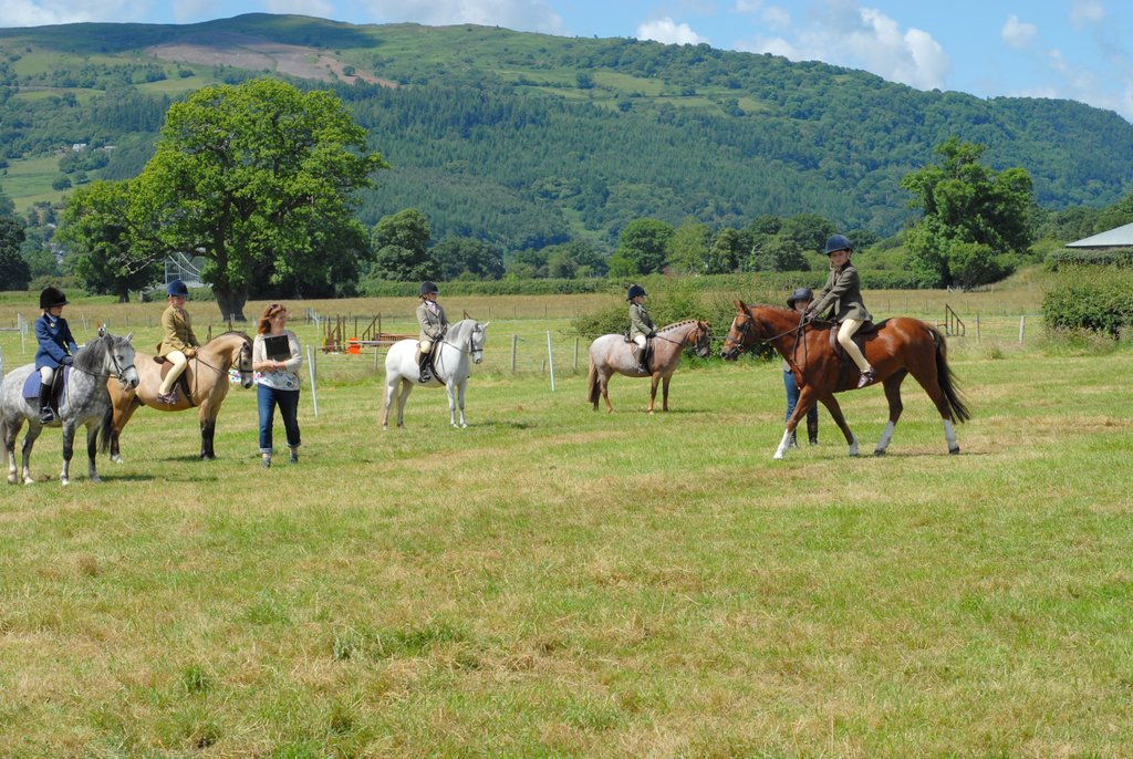 Aberconwy Pony Club Fun Day