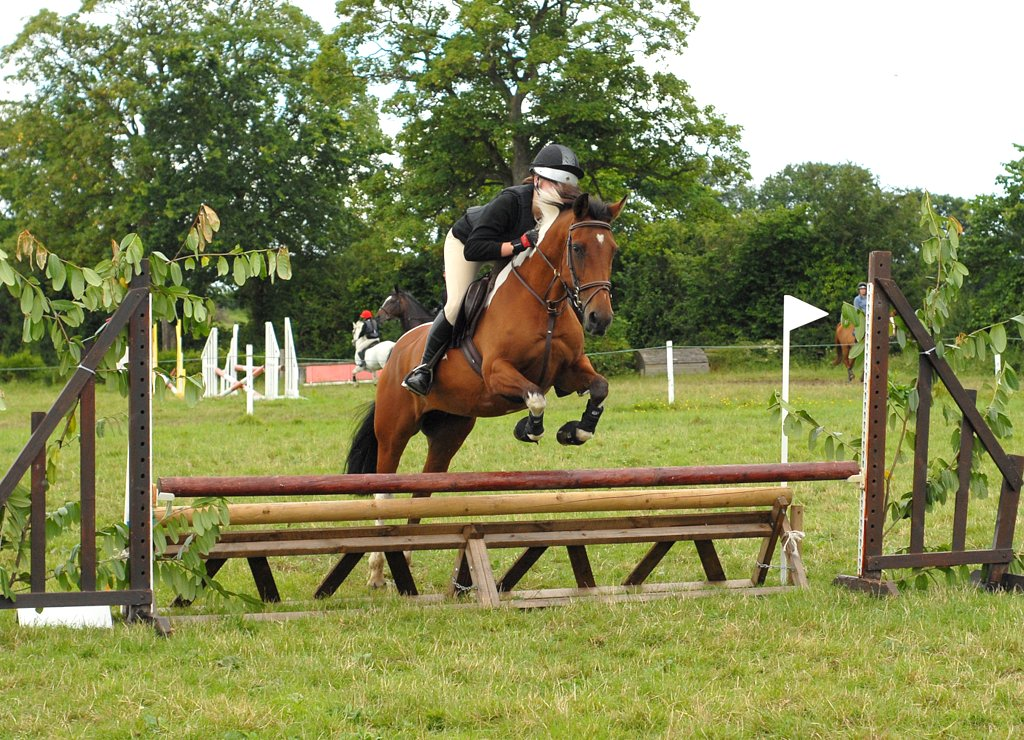 Flint and Denbigh PC Arena Eventing Charity Day at Dyfnog, Sunday 6th July