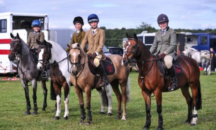 Scarlet Owen …. her report of The Land Rover Pony Club Regional Championships at Eland Lodge