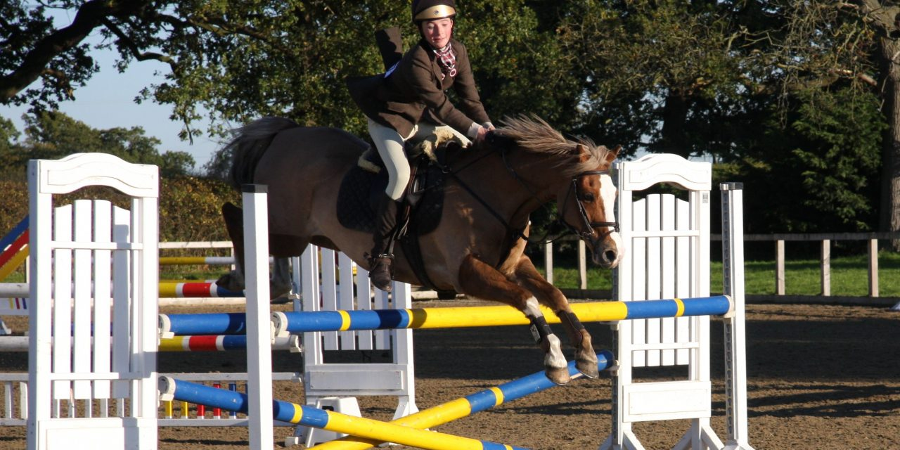 Showjumping training at Tyddyn Farm